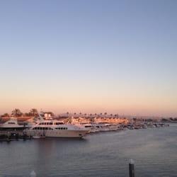 American Junkie Newport Beach Ca