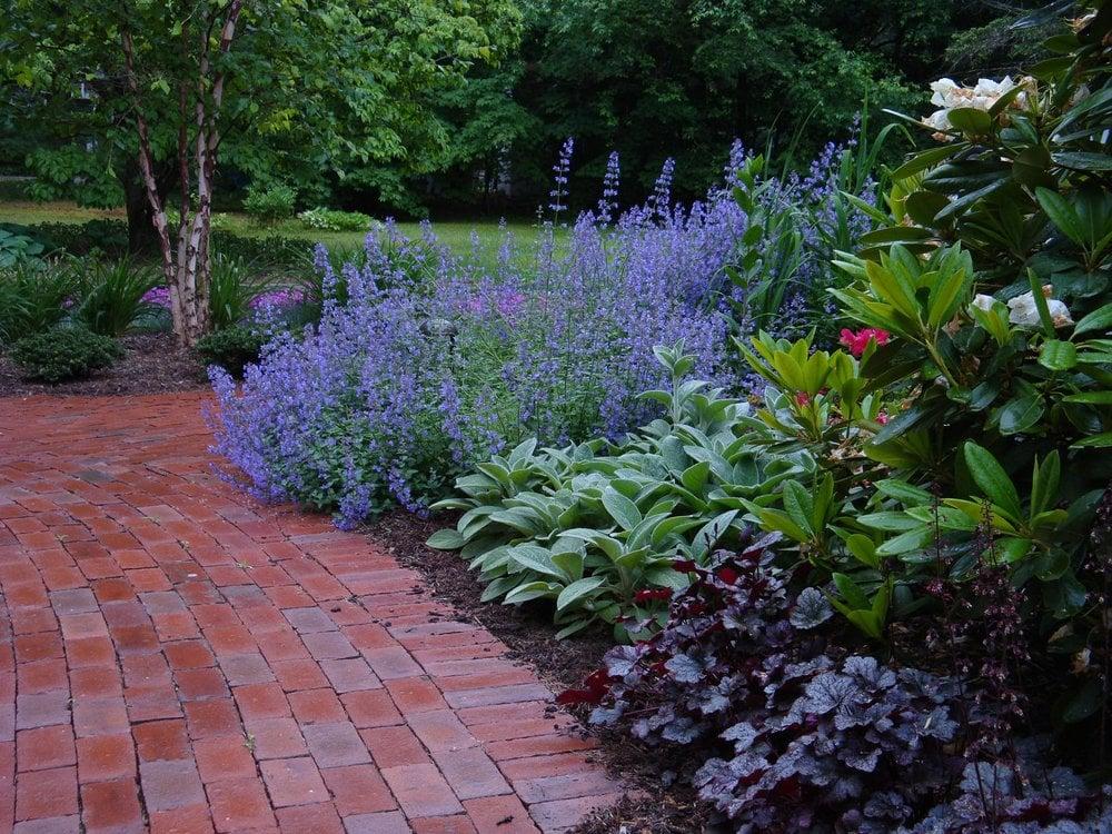 Blue heron landscape design llc landscaping simsbury for Perennial garden maintenance