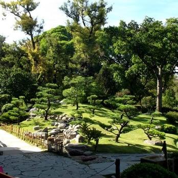 Jard n japon s 183 fotos parques y jardines palermo for Jardin japones horarios