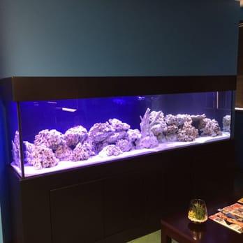Oceans Aquarium 66 Photos 53 Reviews Aquarium