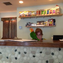 The Center For Avian & Exotic Medicine - Ollie harassing the secretary - New York, NY, Vereinigte Staaten