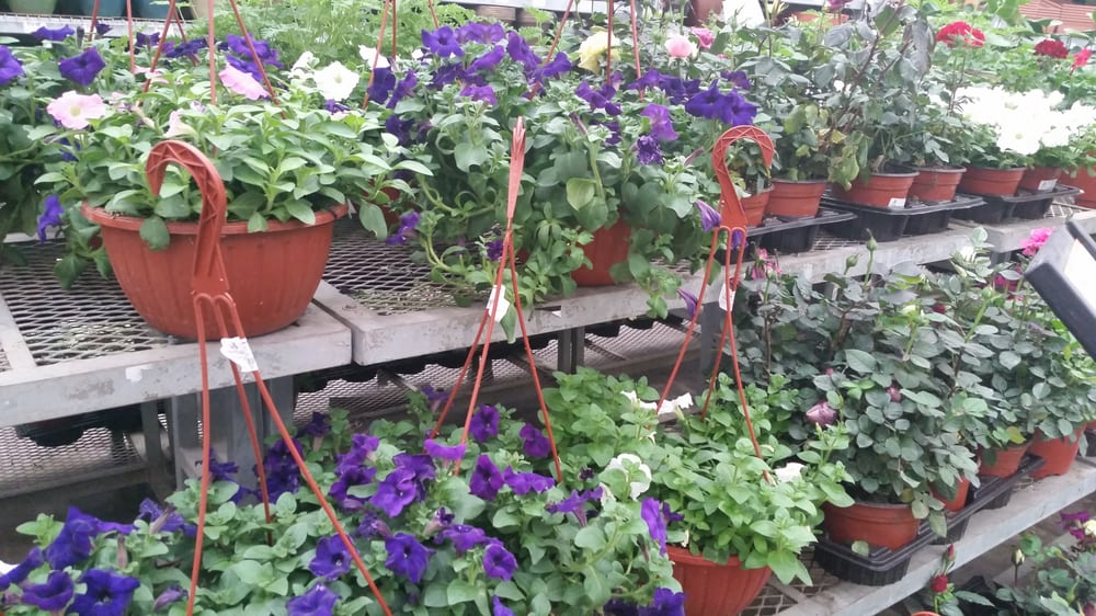 Home depot hardware stores angelopolis puebla for Home depot jardineria