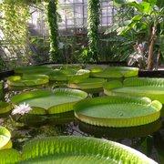 Botanischer Garten, Bochum, Nordrhein-Westfalen