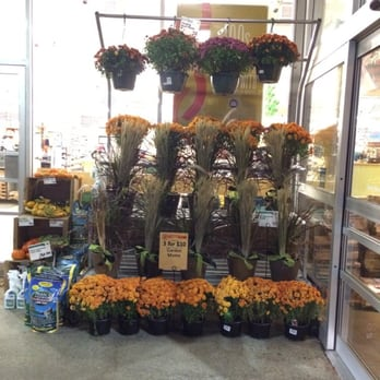 Whole Foods Quincy Fl
