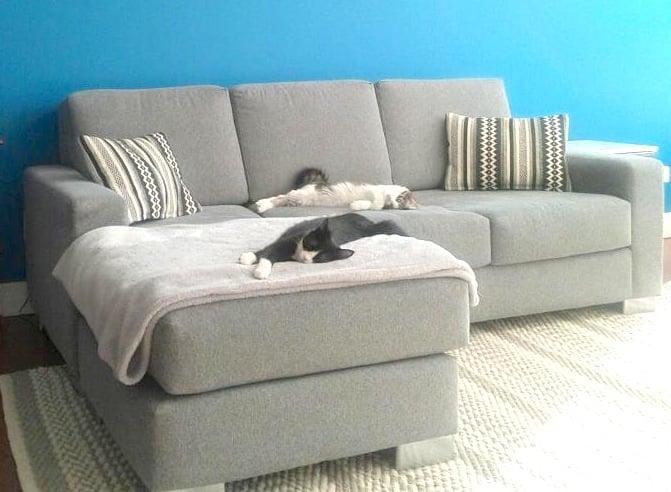 Novo furniture m bel riley park vancouver bc for Pop furniture bewertung