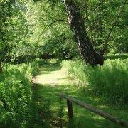Forstbotanischer Garten Eberswalde, Eberswalde, Brandenburg