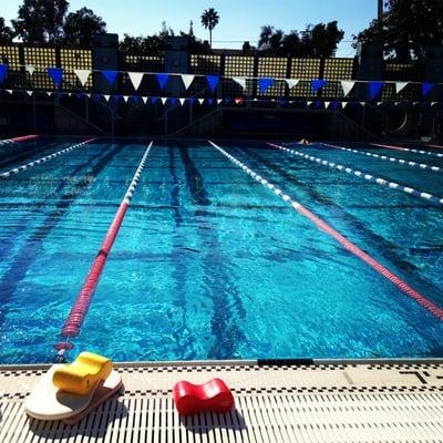 Santa Monica Swim Center Swimming Pools Santa Monica Santa Monica Ca Reviews Photos