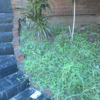 Belgrano del sol spas colegiales buenos aires - Precio hora jardinero ...