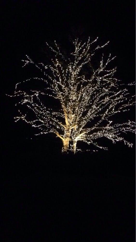 Fantasy In Lights 17 Photos Botanical Gardens Callaway Gardens Pine Mountain Ga