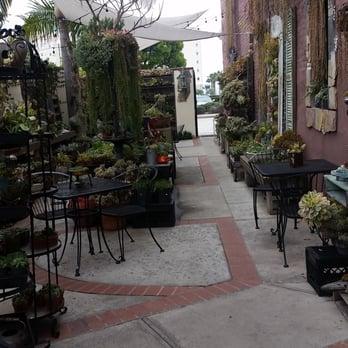Succulent Cafe Oceanside Ca United States Coolest