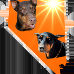 Doberman rescue of nevada animal rescue shelters for Dog rescue las vegas nv