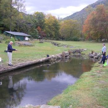 Andy s trout farm hiking dillard ga reviews for Georgia fish farms
