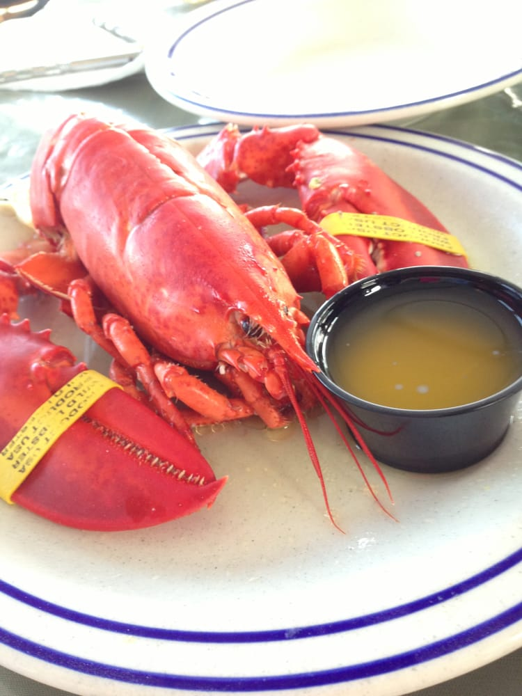 The Lobster Pound - 24 Photos - Seafood - Lincolnville, ME ...