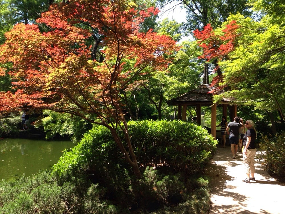 Fort Worth Botanic Garden Botanical Gardens Fort Worth Tx United States Yelp