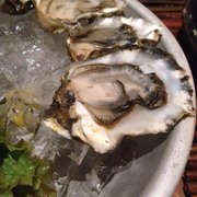 The Schooner - Netarts, OR, États-Unis. Oysters from Netarts Bay. Couldn't get much fresher than that!