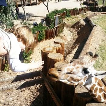 Wild animal safari park arizona