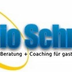 Mario Schmidt, Berlin