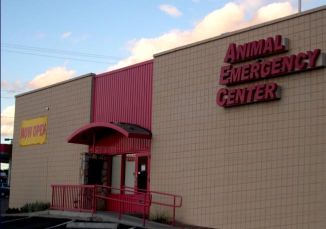 Crossroads Animal Hospital - Veterinarian In El Paso, TX ...