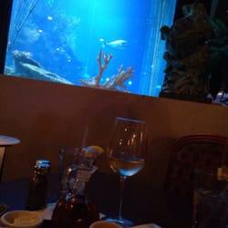 Saltwater Grill Seafood Panama City Beach Fl