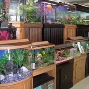 Blue Lagoon Aquarium Closed 31 Reviews 31 Photos