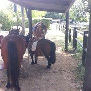 Lulu Parc - Rochecorbon, Indre-et-Loire, France. On peut aussi faire des balades en poney.