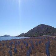Iles Sanguinaires, Ajaccio, Corse-du-Sud, France