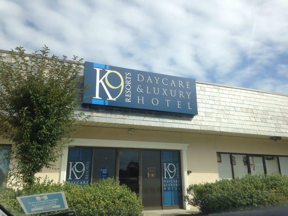 K 9 resorts daycare luxury hotel pet boarding pet for Luxury hotel search