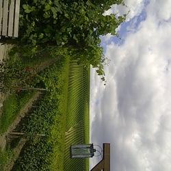 Gutsausschank im Baiken der hessischen Staatsweingüter, Eltville, Hessen