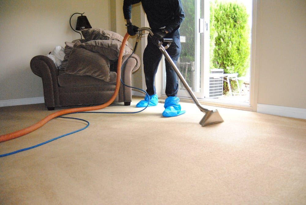 Fresh And Clean Carpet Cleaning Carpet Cleaning 160