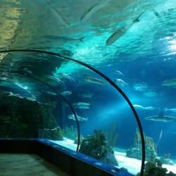 Omaha S Henry Doorly Zoo And Aquarium Omaha Ne United