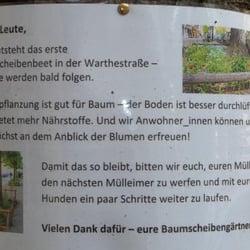 Baumscheiben, Berlin