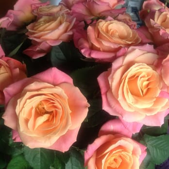 20 of these beautiful blooms for a tenner?! GIVE ME ALL OF THEM.