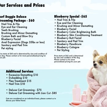 Dog Grooming In Rialto