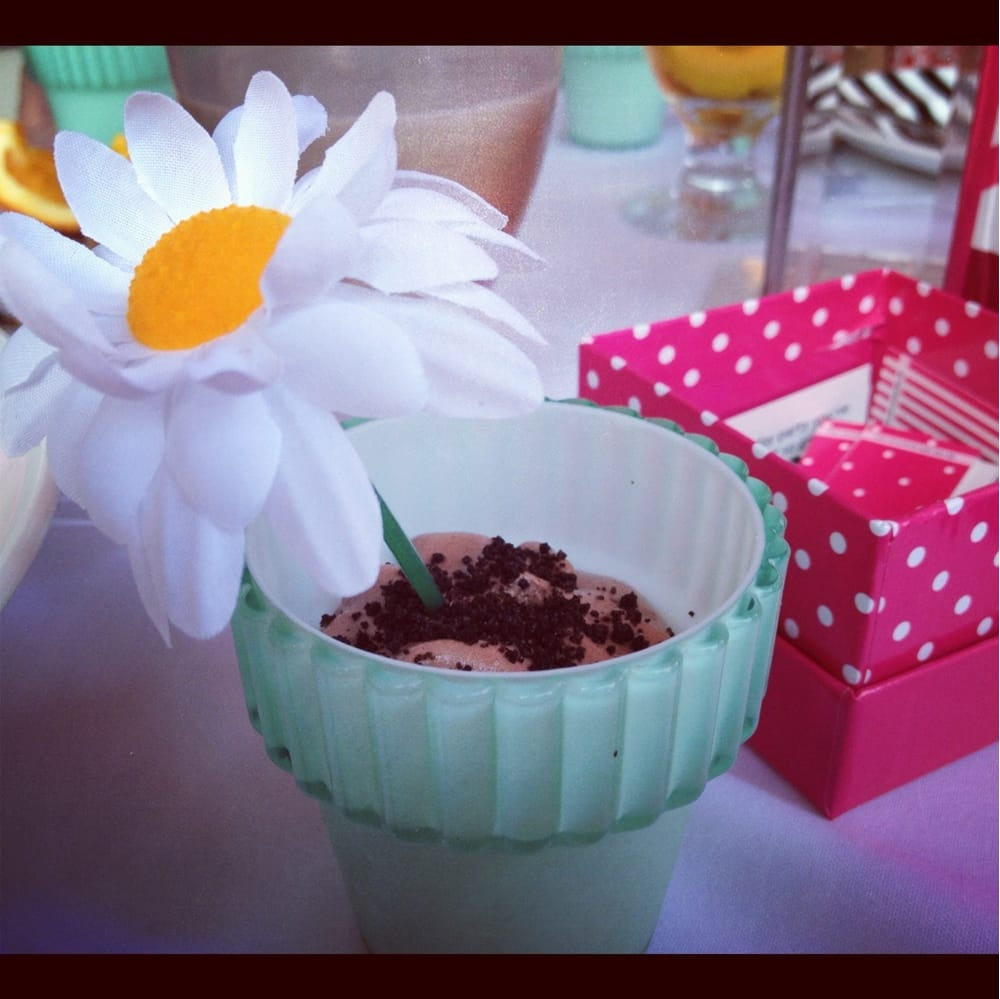 ... , CA, United States. Chocolate mousse in a flower pot for dessert