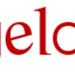Michaelangelo Sculpture Studio logo