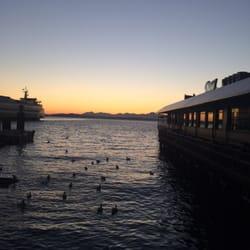 Ivar s pier 54 fish bar 163 photos seafood for Seattle fishing pier