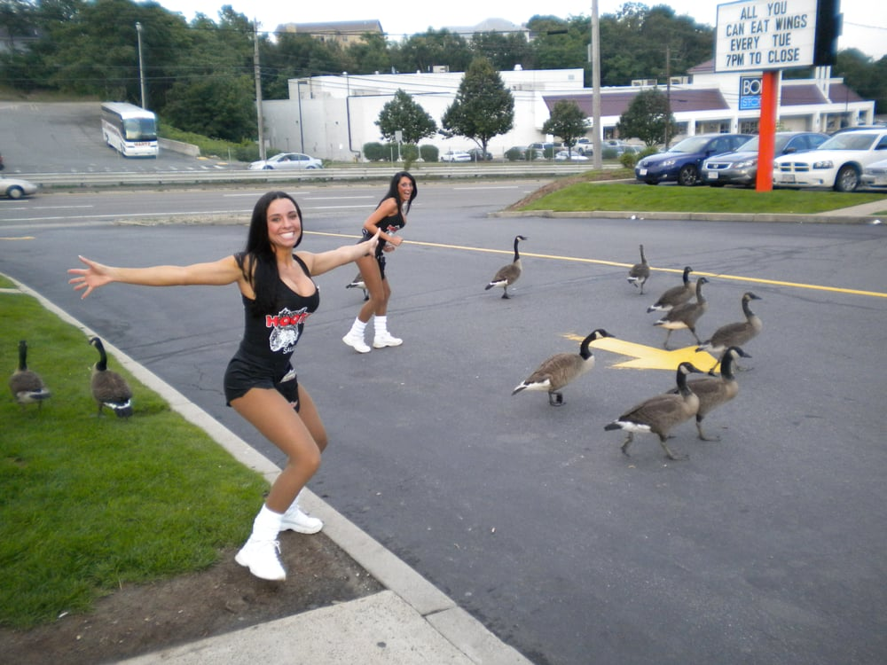 Saugus (MA) United States  city images : Hooters Chicken Wings Saugus, MA, United States Reviews Photos ...