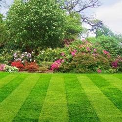 Lawn Masters logo