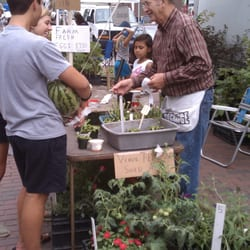 Riverfront Farmers' Market - venus fly traps and other plants for sale at the market (early July) - Wilmington, NC, Vereinigte Staaten