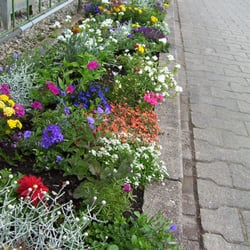 Botanischer Garten, Tübingen, Baden-Württemberg