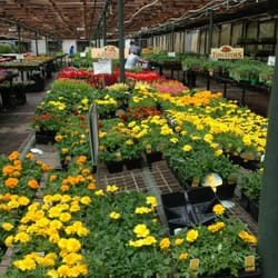 Bates Nursery Garden Center 17 Photos Gardening Centres Nashville Tn United States