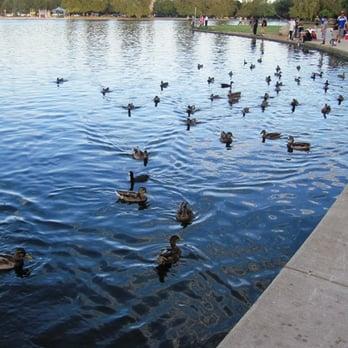 Anthony c beilenson park lake balboa van nuys ca for Balboa lake fishing