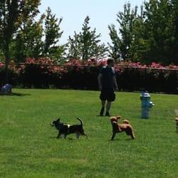 Hondo Dog Park Hillsboro