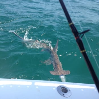 Above Average Fishing Charters Clearwater Beach Fl
