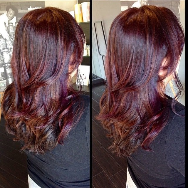 Gallery For gt Auburn Hair Purple Highlights