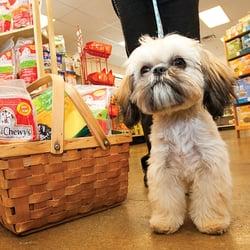 pet stores near me   pet stores   warren mi   photos   yelp