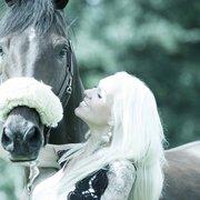 horse fotografie vom fotograf offenbach