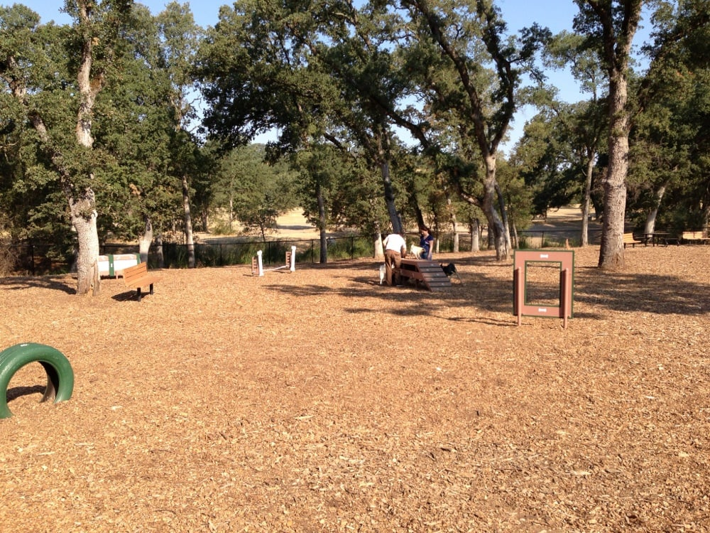 Dog Park Rocklin Ca