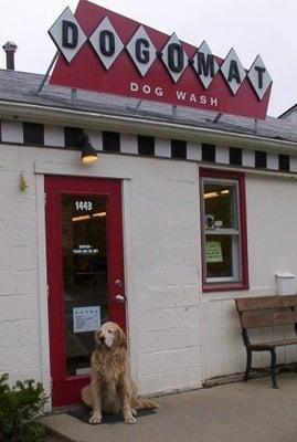Dog O Mat  Ann Arbor