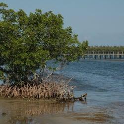 Bear point sanctuary fort pierce fl united states yelp for Deep sea fishing fort pierce